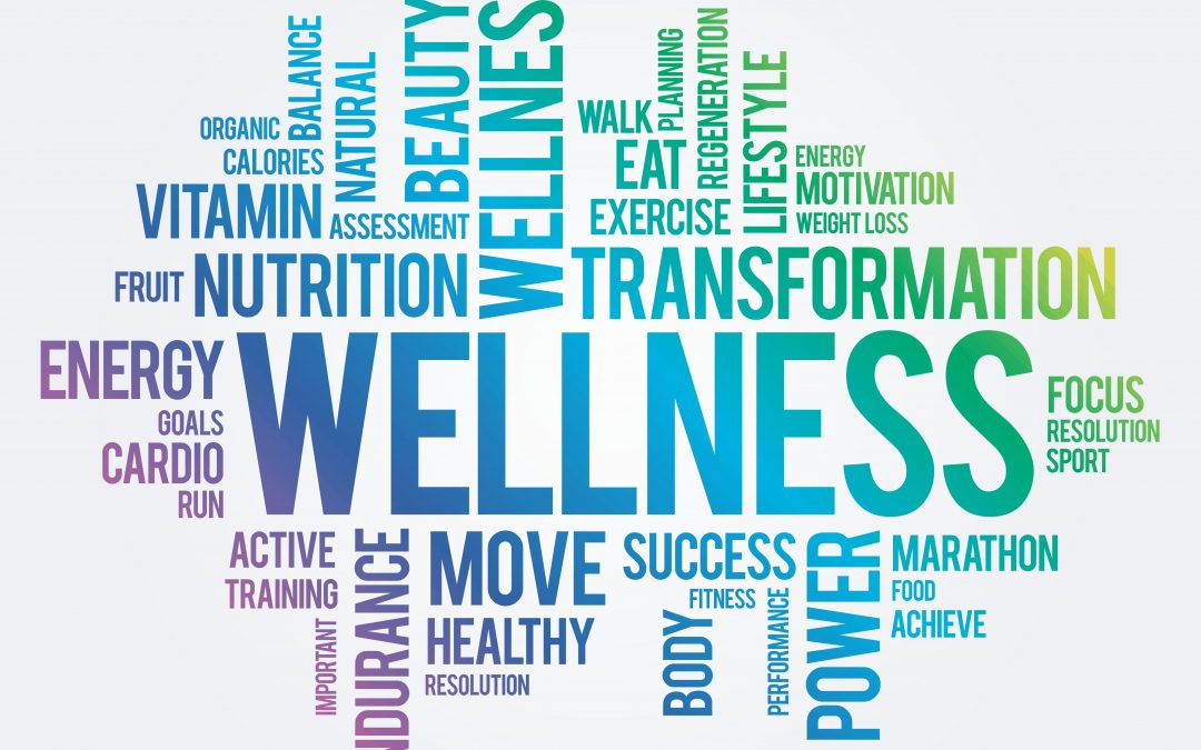Wellness Plan Workout